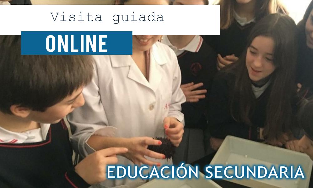 Visita guiada online Educación Secundaria - Colegio Mater